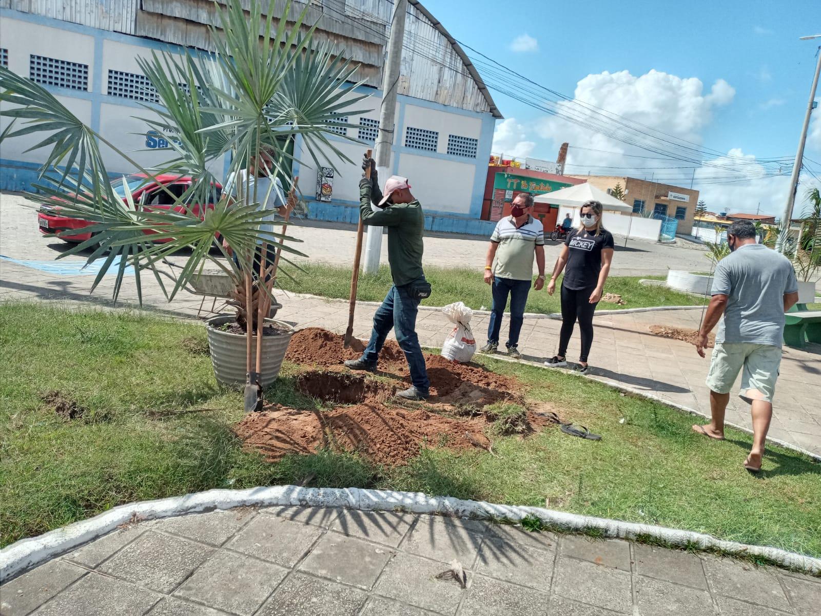 Prefeito acompanha processo de arborização da praça Edmilson Ribeiro